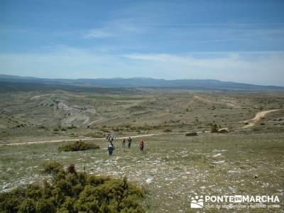 Barranco de Borbocid - caminando Guadalajara; montañismo madrid; senderismo sierra madrid